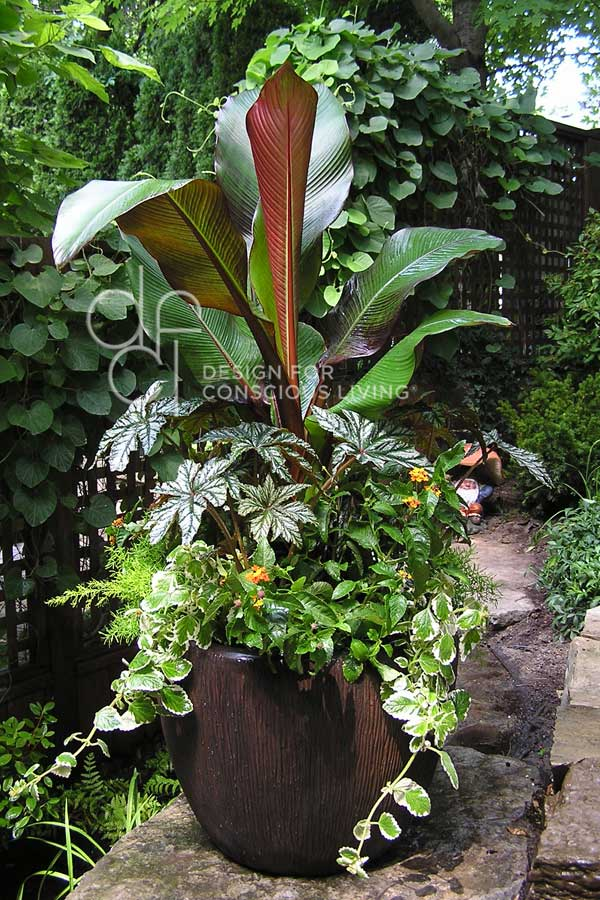 Patio Planter - Landscaping by Design for Conscious Living