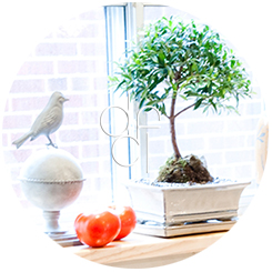 Interior Decorating - Window-Size Touches