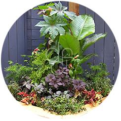Exterior Decorating - Porch Planter